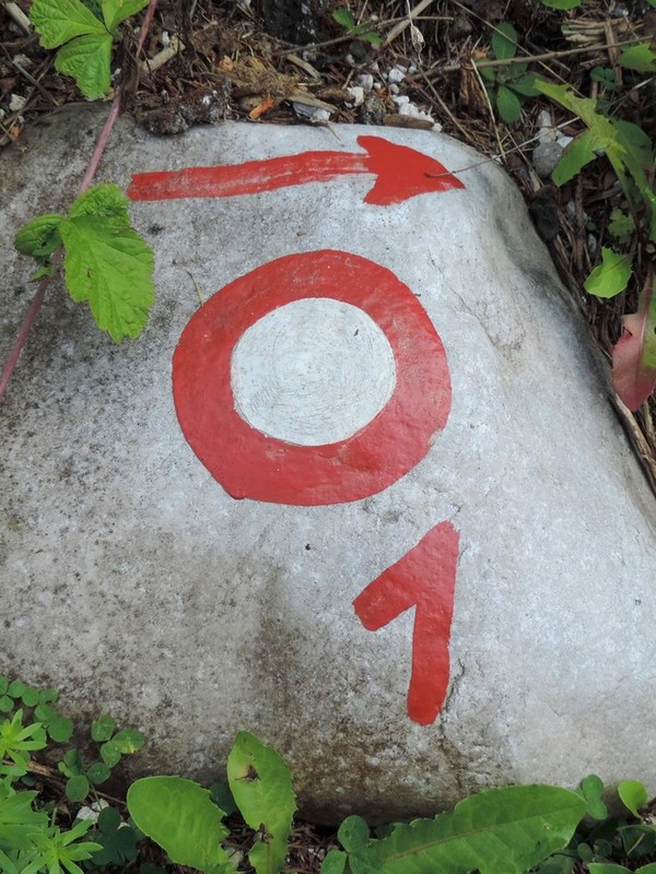 Slovenian Mountain Trail is marked with number 1 at the side.